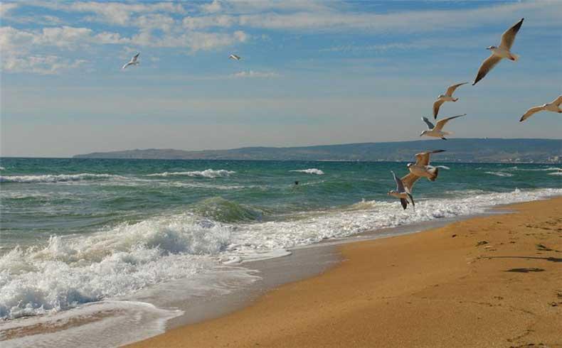 Незабываемая атмосфера Золотого пляжа - Фото