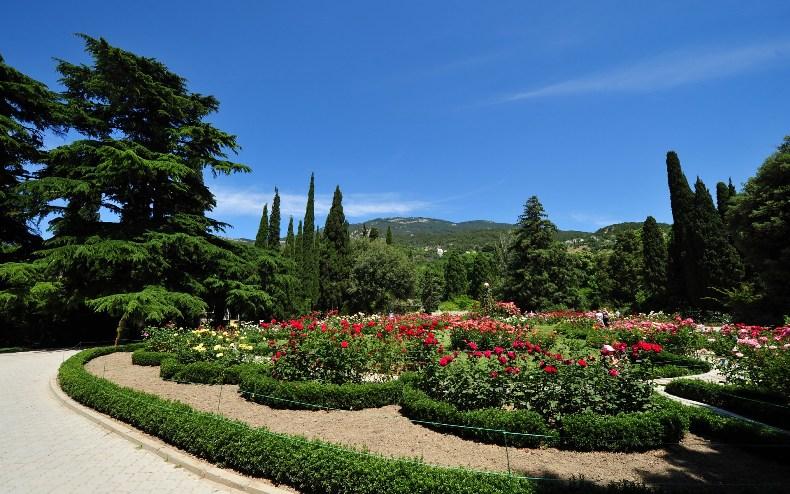 Ботанический сад в Ялте - Фото 13