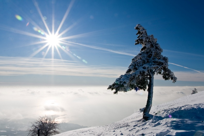 Зимний рассвет на Ай-Петри - Фото 12