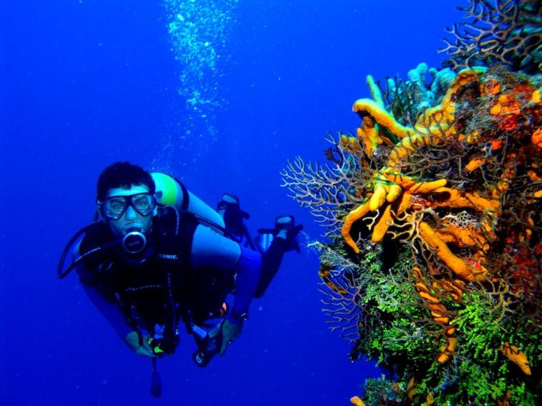 фото с аквалангом под водой