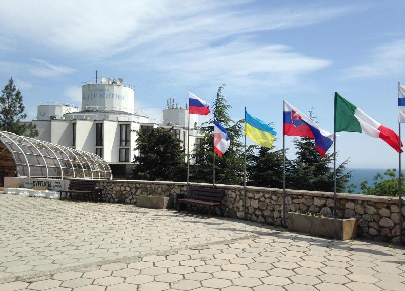 Флаги перед входом в корпус - Фото 11