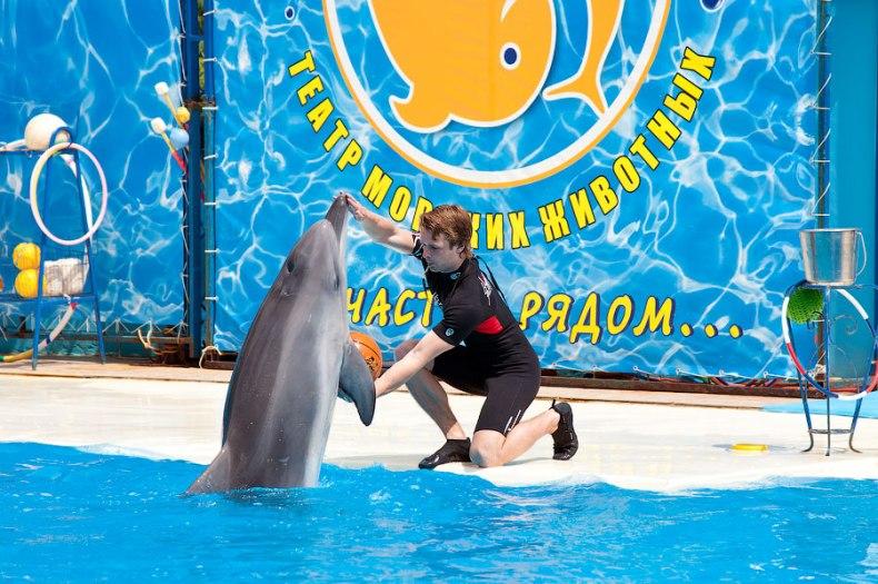 Театр морских животных в Ялте - Фото 16