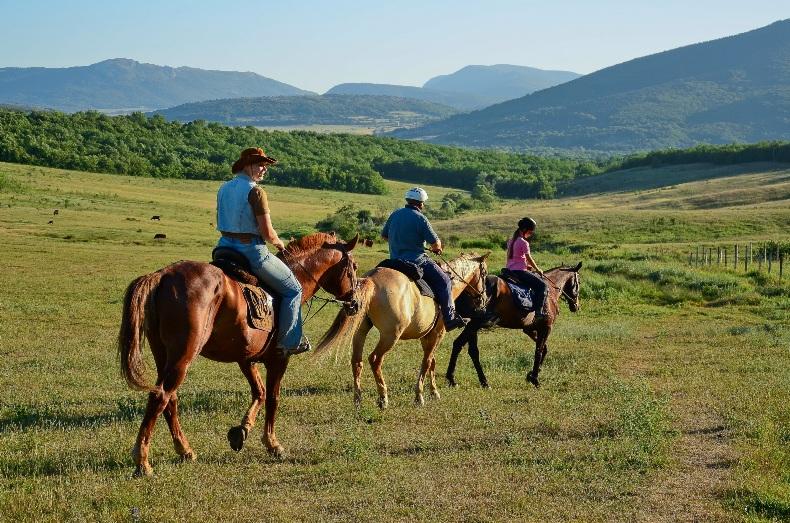 Конные прогулки по Байдарской долине - Фото 15