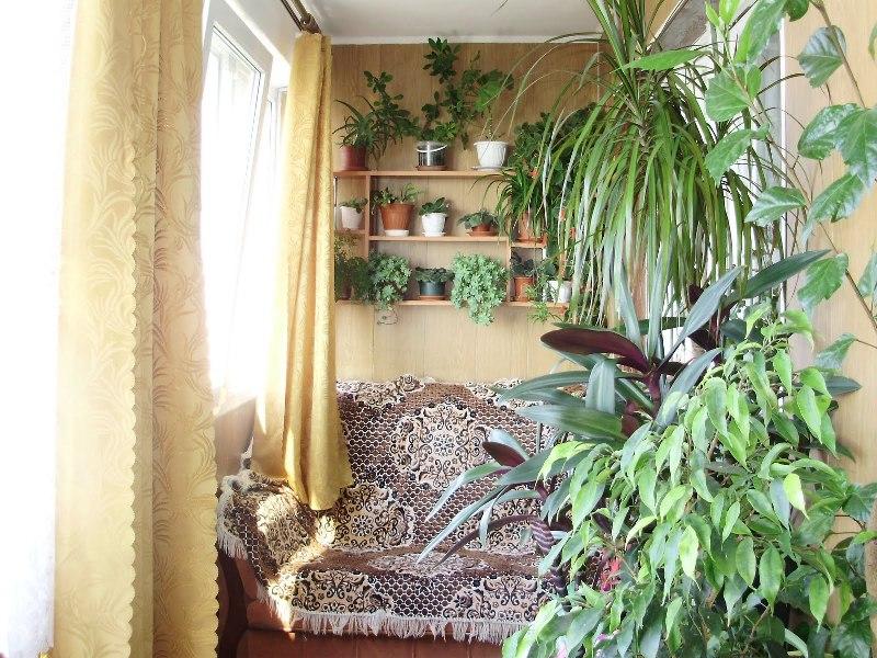 Комнаты в домике - Фото 05